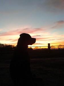 Bayka zonsondergang