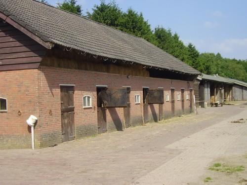 stallen